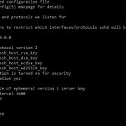 Opciones de configuración en servidores SSH