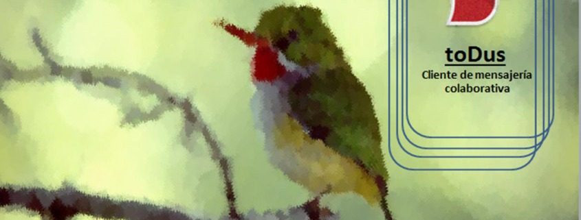 aplicación cubana de mensajería instantánea, toDus
